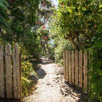 hopewell-bush-walks