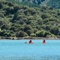 Spring Special Kayaking